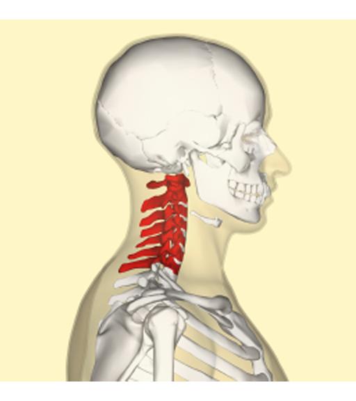 tensione muscolare al collo